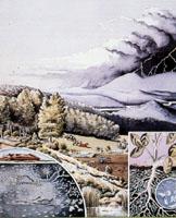 Environmental Art & Media